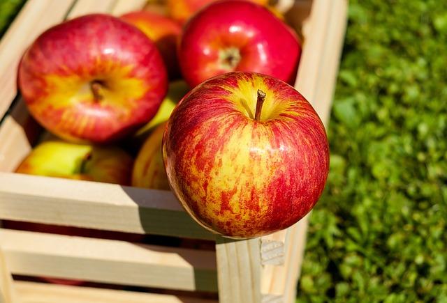 bedýnka s jablky