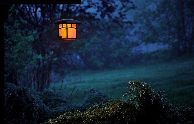 světlo na večerní zahradě